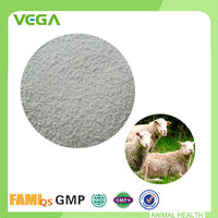 Stomach Function Food Supplement Supplement Lysine Methionine For Sheep
