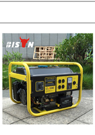 BISON(CHINA) Hot Sale Diesel Generator 7.5 kva