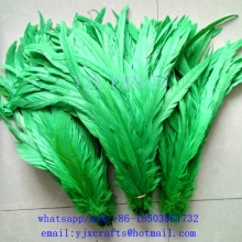 Free Shipping rooster tail coque feather 30-35cm chicken feather for sale cheap