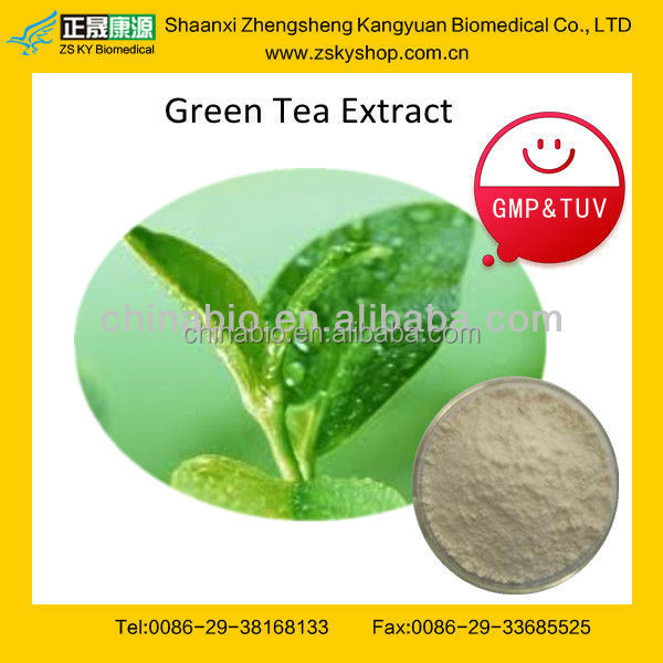 GMP Certified factory supply Antioxidant EGCG Green Tea Extract/Catechin/Gallate