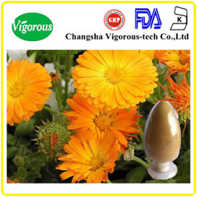 Free sample 5%-20% calendula officinalis extract lutein/calendula flower extract