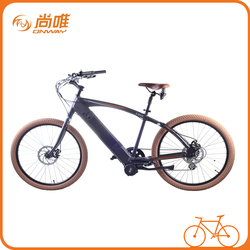 Super 36v brushless adult motor electric bike for male