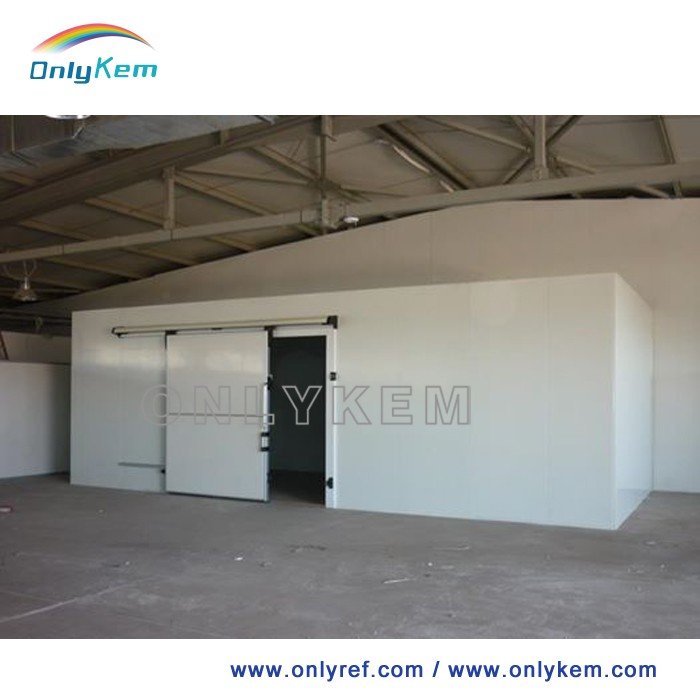 Competitive cold walk in cooler storage room for fruit flower and vegetables