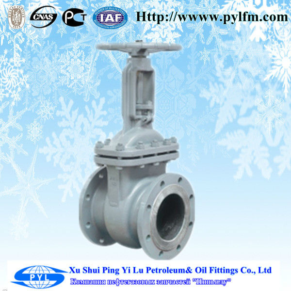 class A PYL gas regulator gate valve china factory export to russia