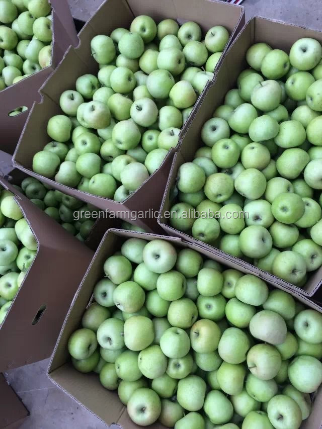 China Qinguan Apple with delicious
