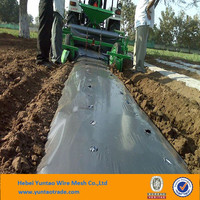 PE Agricultural Perforated Plastic Black/silver Mulch Film