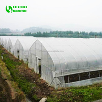 Agriculture Hoop Multi Span Greenhouse Covered