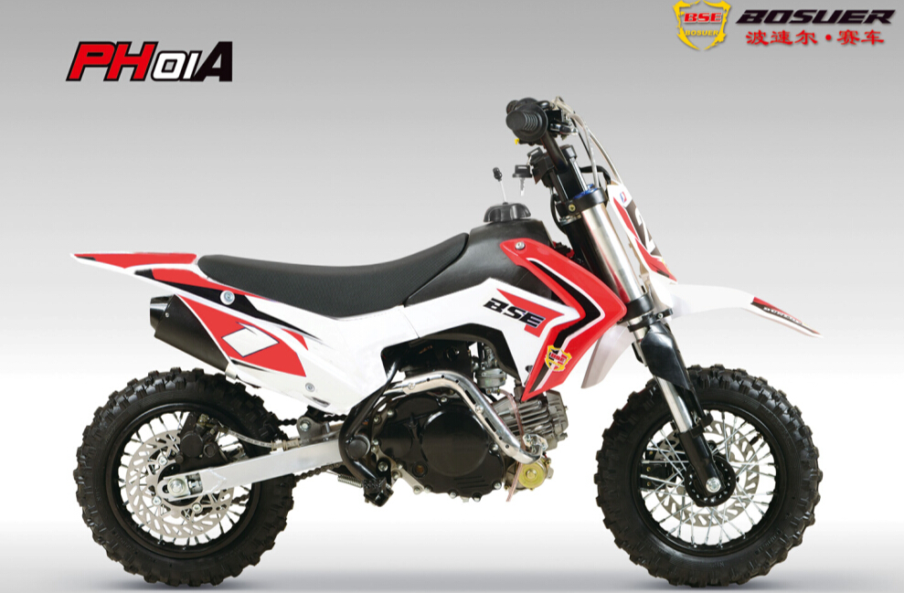 BSE 2016 new designs 110cc pit bike cheap