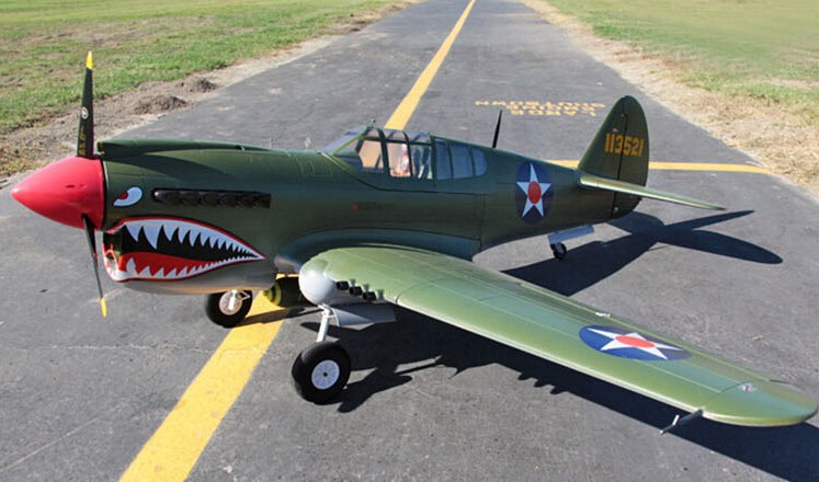 P40 biggest rc airplane electric