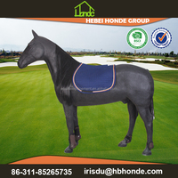 Show Jumping Saddle Pads