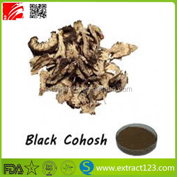 100 natural herbal extract black cohosh extract with Triterpenoid saponins