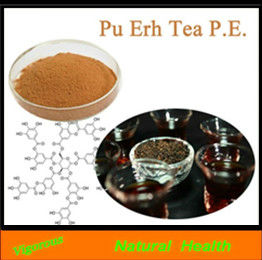 100% Natural Pu-erh tea powder extract / puer tea extract powder