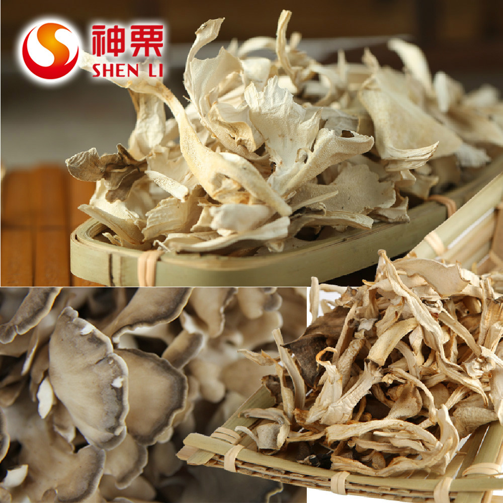 2016 Hot Sell AD Chestnut Mushroom Grifola frondosa