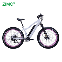 2018 Hot 48V Bafang Motor Big Tire Electric Fat Bike for women