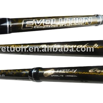 Bass fishing rod (Evolution)