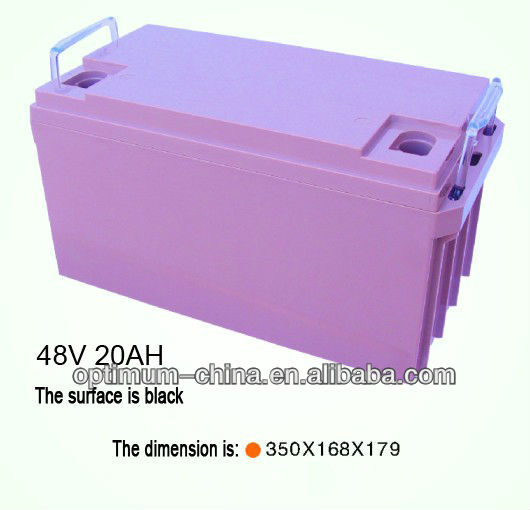 lithium electric vehicle battery 48V 20ah with PCM