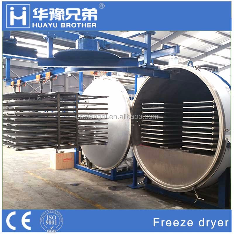 fruit drying machine vacuum freeze drying oven for all kinds of fruit