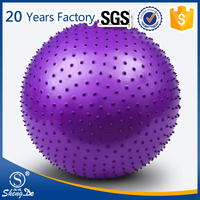 Yoga Exercise Ball Gym Massage Ball Manufacturer