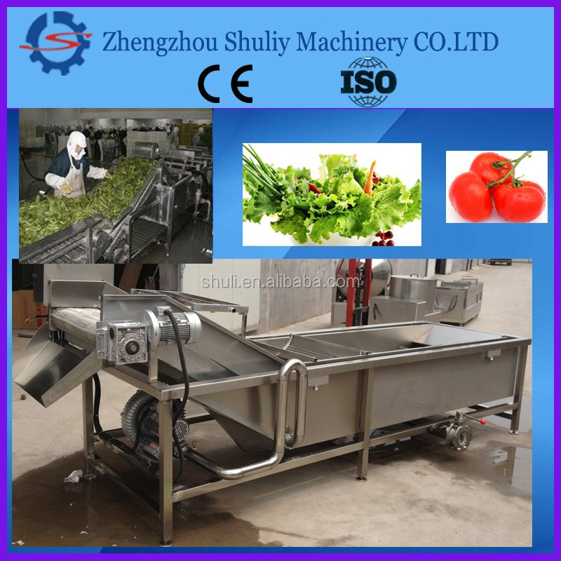 China first-class quality Fruit&vegetable bubble washing machine/ bubble cleaning machine//whatsapp:0086-15838059105