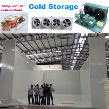 Fish seafood cold storage for freezing with capacity 200ton