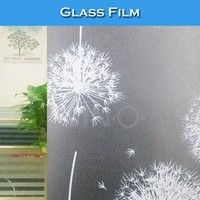 S002 Tint Vinyl Roll Decorative Window Films For Home Glass