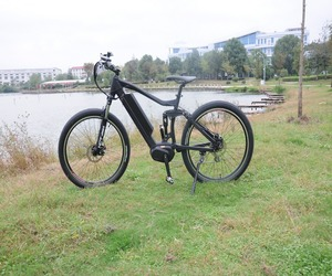 8FUN 500w big power fat tire electric bike/snow e-bike