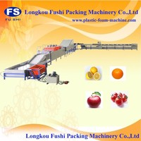 Automatic Fruit And Vegetable Washing Waxing
