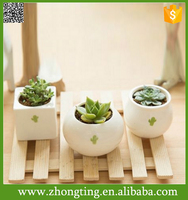 Gardening Mini white circular Bonsai Planter ceramic unique plant pots