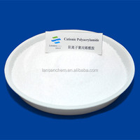 Poly Acrylamide Copolymer Water Treatment Polymer
