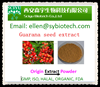 /product-detail/wholesale-price-for-natural-high-quality-guarana-powder-10-20-caffeine-60215350785.html