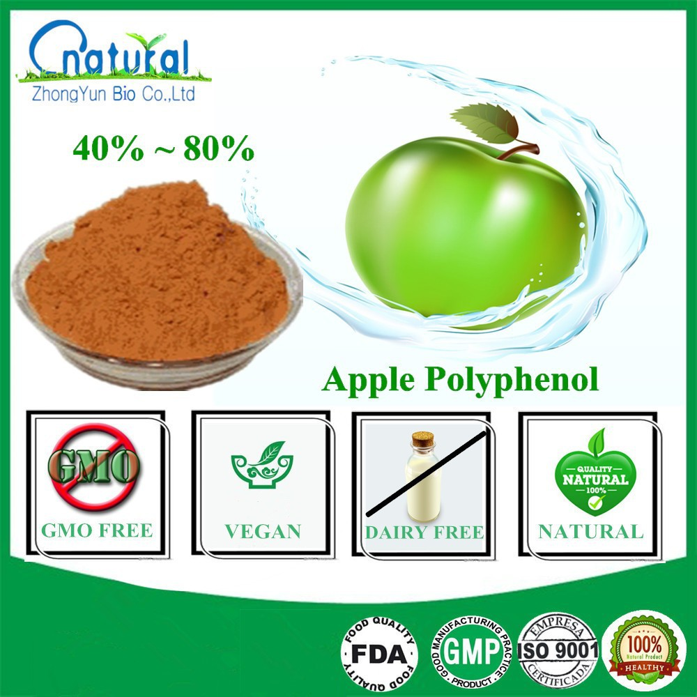 GMP Certified Natural Green Apple Extract Polyphenol