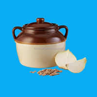 nice style cooking earthenware pot with handle