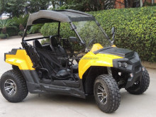 EPA EEC China 2 Seaters Electric Start 150cc/200cc side by side mini utv