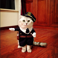 wholesale halloween party policeman cosplay costume for dog and cat