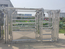 Hot DIP Galvanized cattle squeeze crush