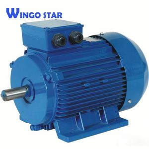 0.55kw y2 Series Three-Phase Asynchronous Induction Electrical Motor