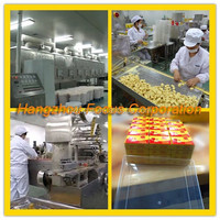 machine chicken cube++all kinds of packings++all kinds of taste++personal lable