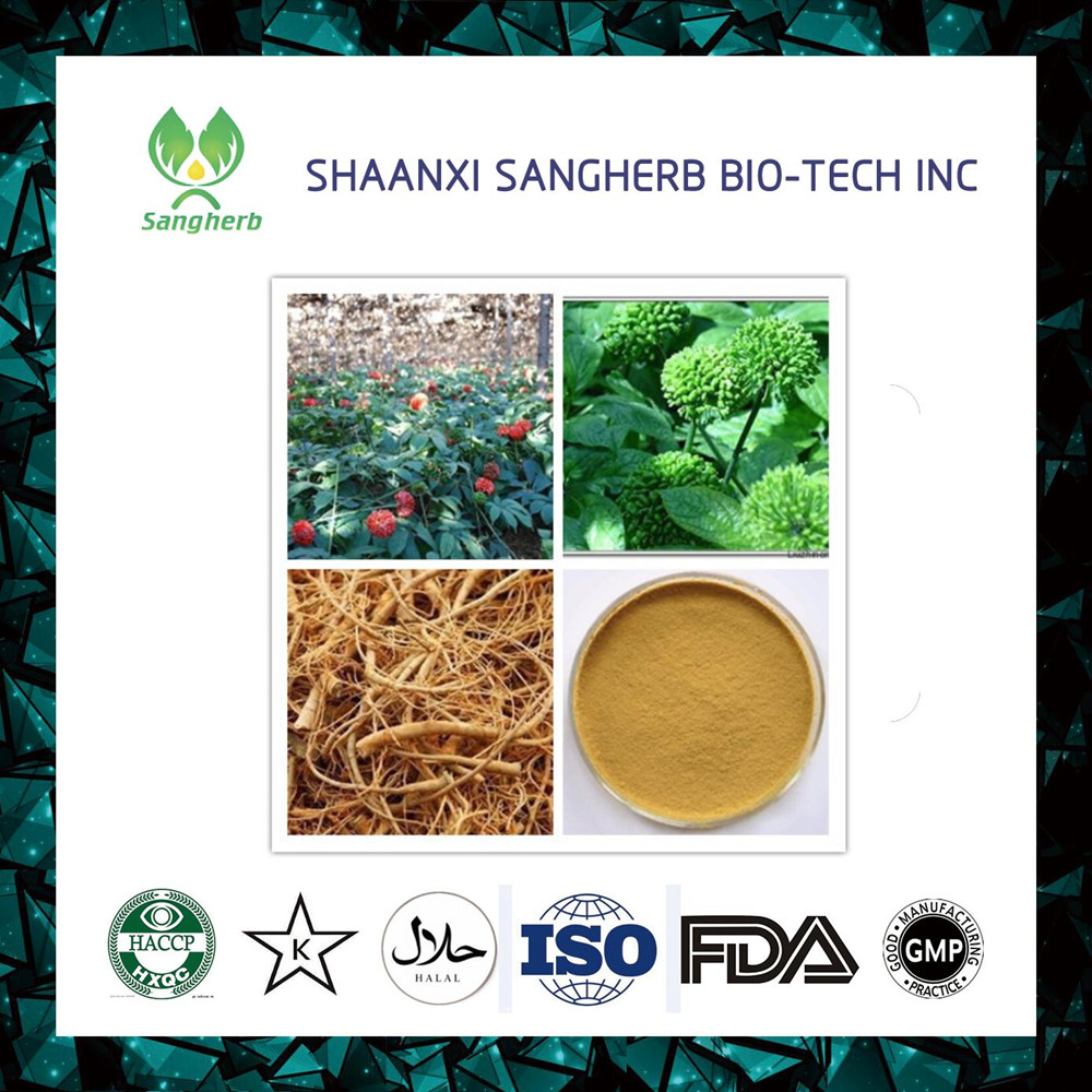 GMP standard high quality Notoginseng Leaf Extract Notoginseng Triterpenes 20:1 powder by TLC