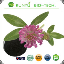 2017 New batch product Red Clover Extract powder organic Isoflavones by fast shipping