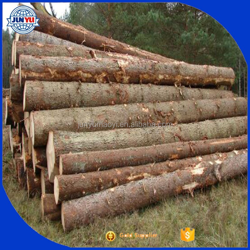 2016 TOP HOT and Sale , Best Price Birch / Pine Wood Logs