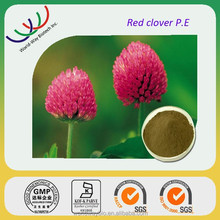 Natural free sample 40% isoflavones,KOSHER FDA HACCP red clover extract,factory supply 15% isoflavone red clover extract powder