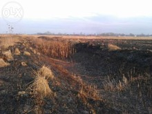 Agricultural Land for Sale in Gogolev, Brovary district, Kiev region, Ukraine 26 hectars