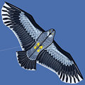 eagle kite for kids