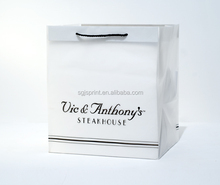 White Shopping Paper Bags With LOGO