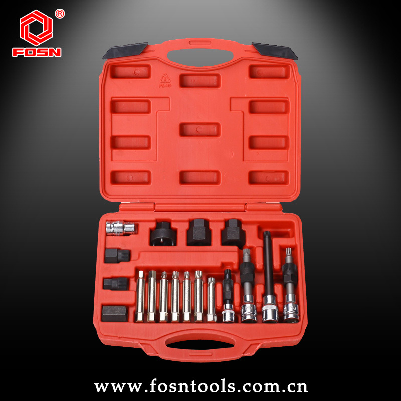 Alternator Freewheel Pulley Removal Power Tool Set 18pc