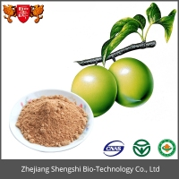 Gmp Standard Manufacture Supply Fruit Extract Powder Green Plum Extract