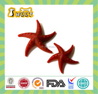 S M L 10g-70g Mint Flavor Wholesale Bulk Gluten Free Canine Dental Chews Sea Star Funny Shape Dog Products