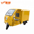 Hot Sale 800W three wheel closed body cargo electric tricycle