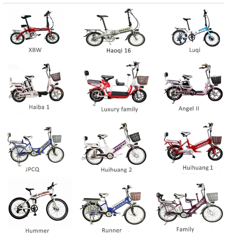 Popular Style 14inch Carbon Steel Ebike Electric Bicycle Electric Bike Chinese pocket bike