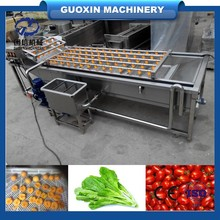 Professional industrial Agriculture golden pumpkin cleaning/black gourd/balsam pear/cucumber washing machine